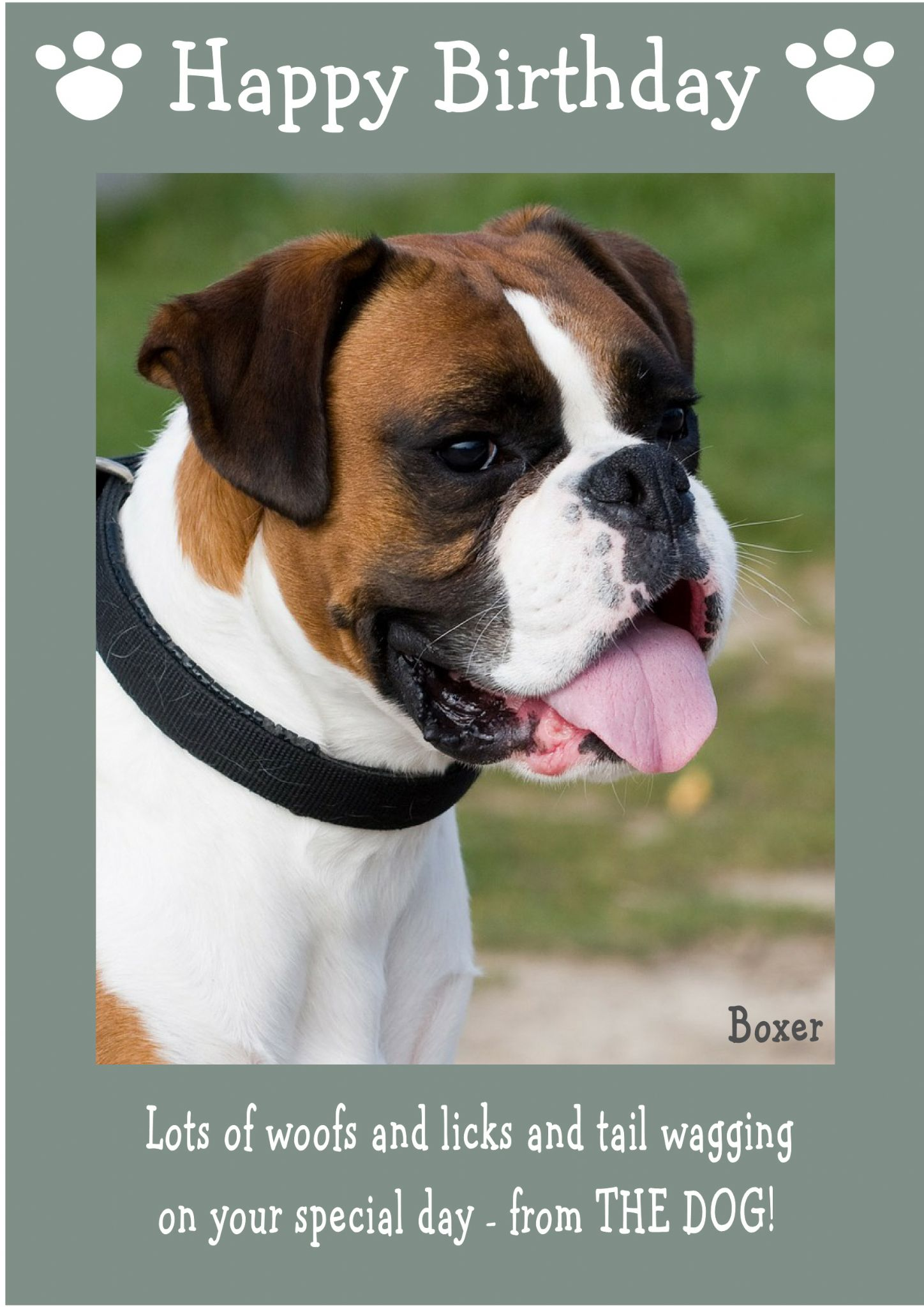 Boxer Happy Birthday From The Dog Theme